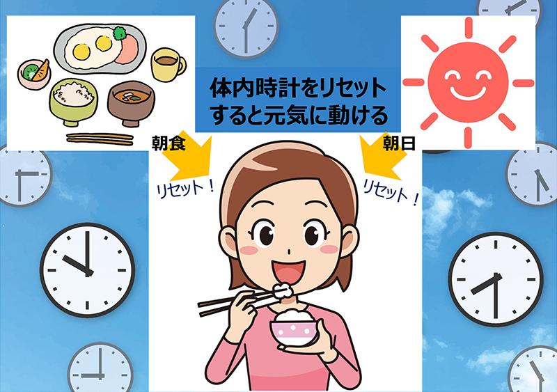 リセット 体内 時計 体内時計のずれを上手にリセット、健やかな生体リズムで生活習慣病をSTOP!